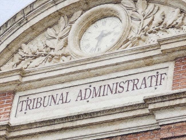 Retranscription de l'audience au Tribunal Administratif contre les lanceurs de balles de défense – 24 janvier 2019