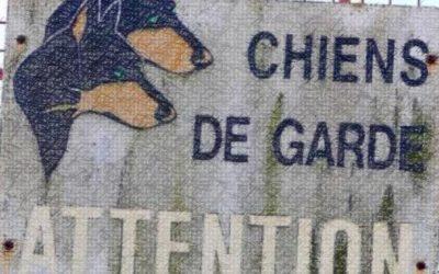 MISE AU POINT : Les chiens de garde et le pilori, contre les journaflics !